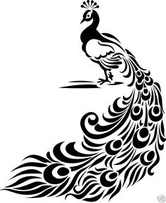 Peacock clipart tribal Peacock patterns feather love Clipart