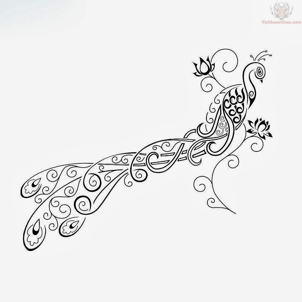Peacock clipart tribal Feather tattoos a tribal tattoo