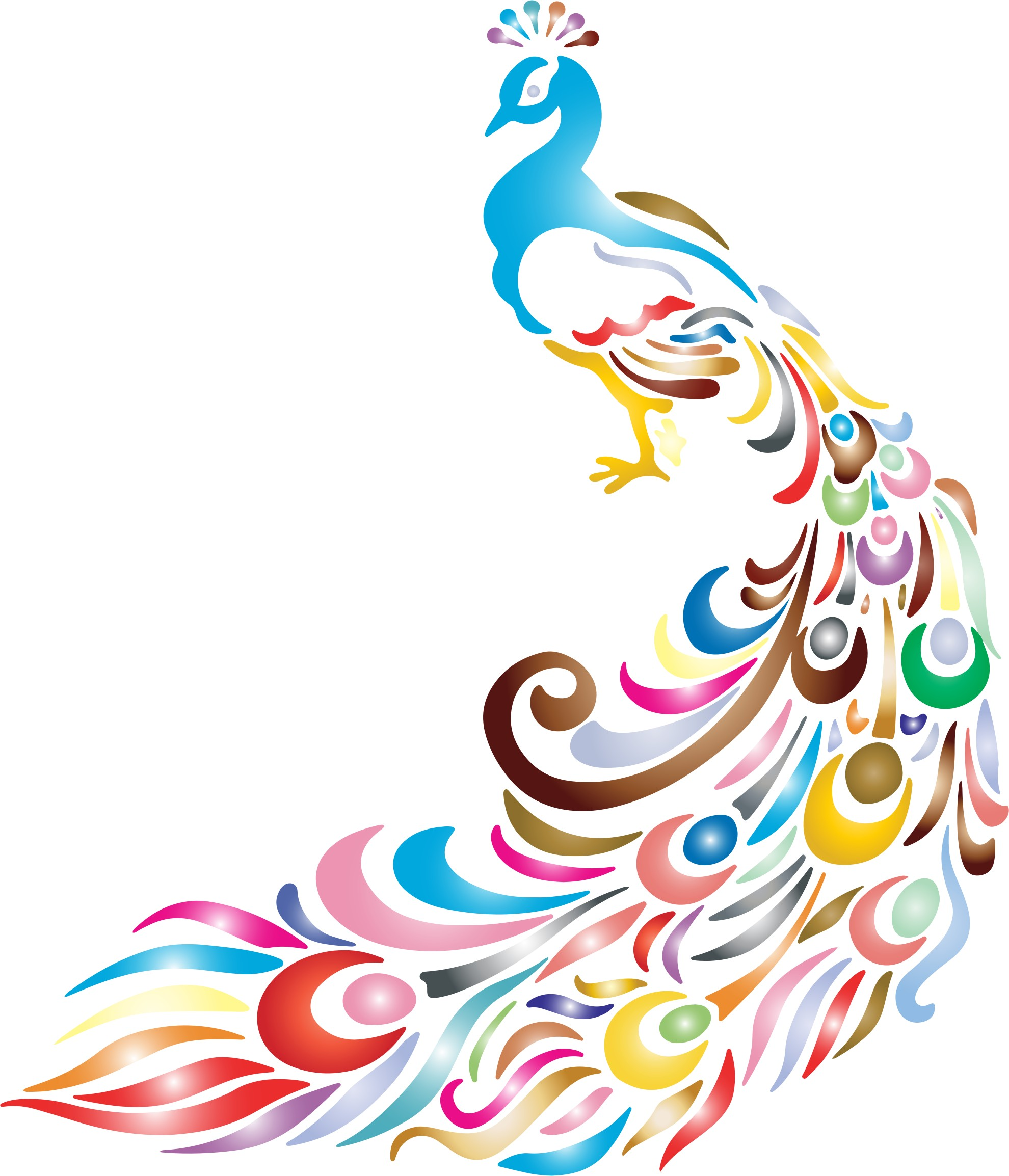 Peacock clipart white background Peacock Images Images Peacock Background