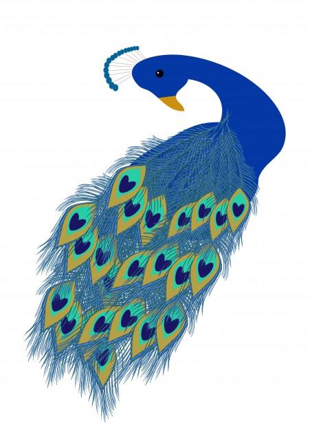 Peafowl clipart Free Clipart Public Peacock