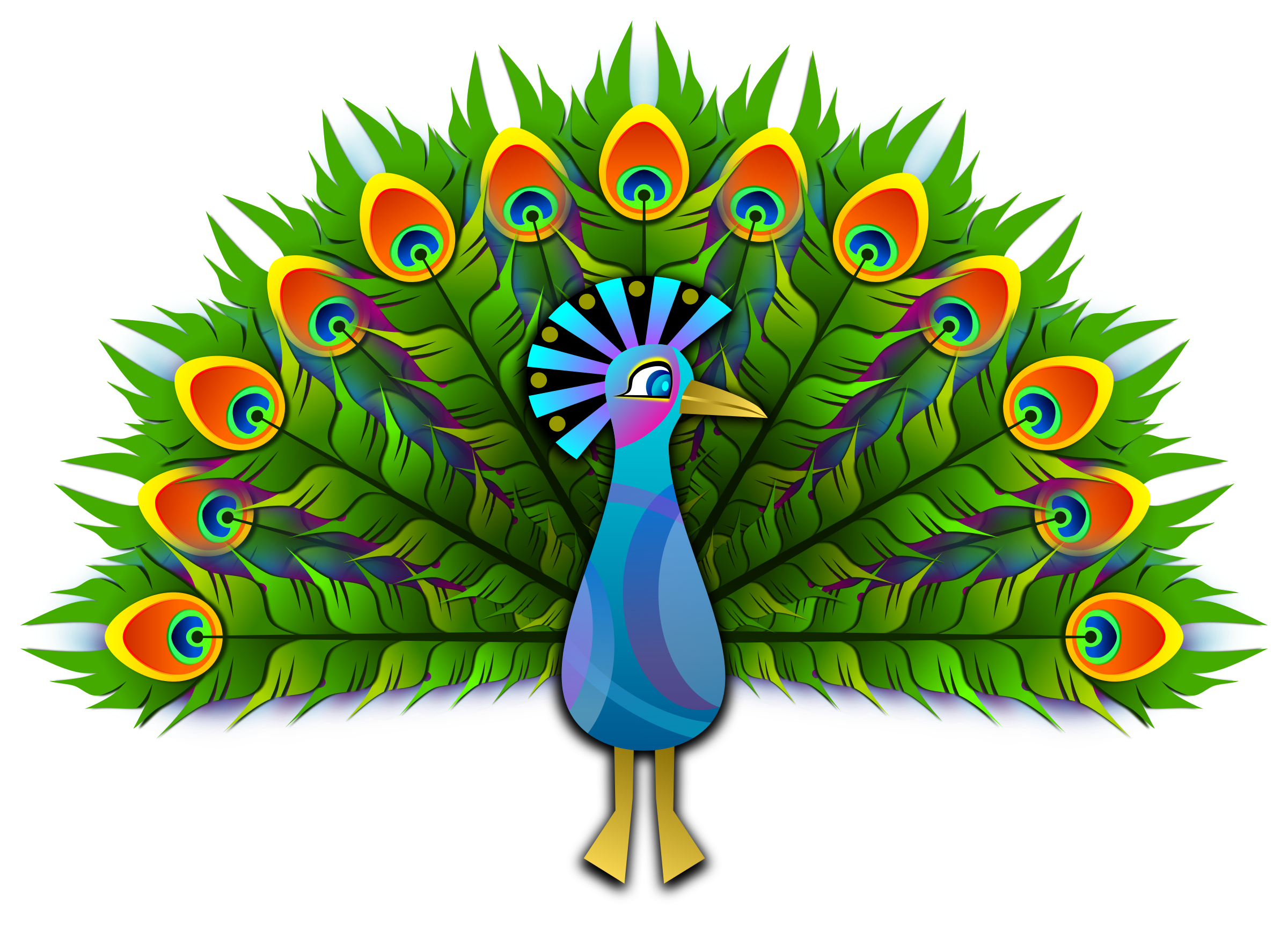 Peafowl clipart Images PNG PNG Peacock free