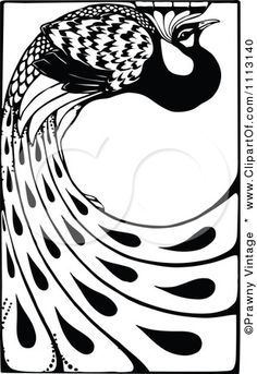 Peafowl clipart black and white Royalty illustrations illustration With for
