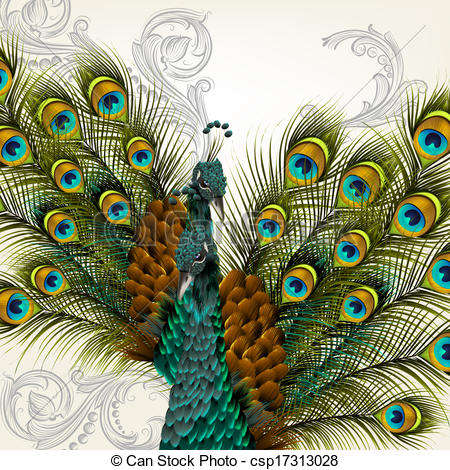 Peafowl clipart cute Of csp17313028 background detailed vector