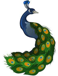 Peafowl clipart cute For Good Tutorials Image minimal