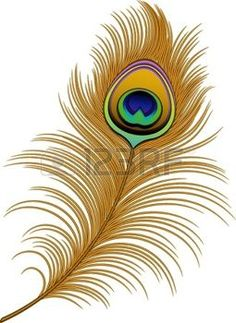 Peacock clipart small And Clipart  Peacock Find