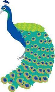 Peafowl clipart cute  peacock art 1122 feather