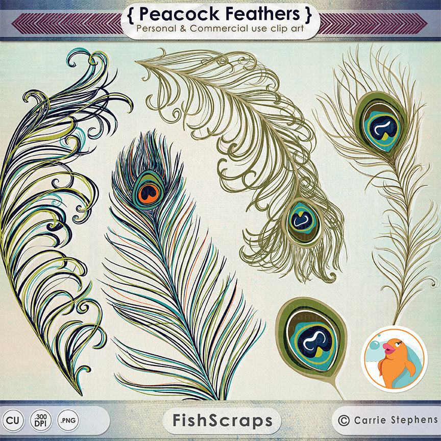 Peafowl clipart indian peacock Illustration Wedding Feather ClipArt Etsy