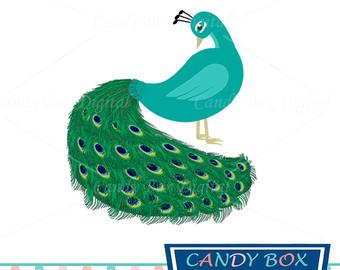 Animl clipart peacock Etsy art Commercial Clip Clipart