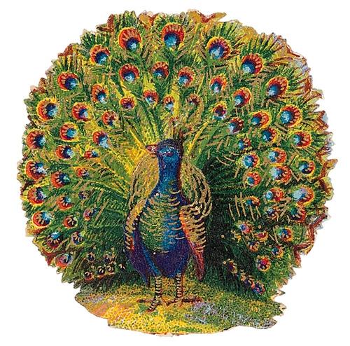 Peacock clipart victorian On clipartix creative cliparts 2