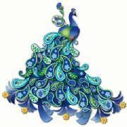 Beautiful clipart peacock Peacock Perfection  Peacock Semi
