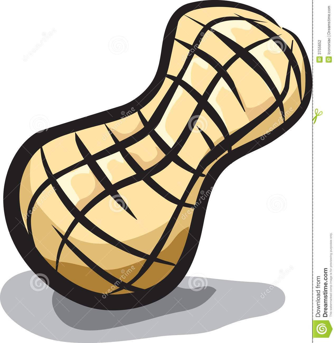 Peanut Butter clipart peanut shell Pictures Free Images Clipart Art