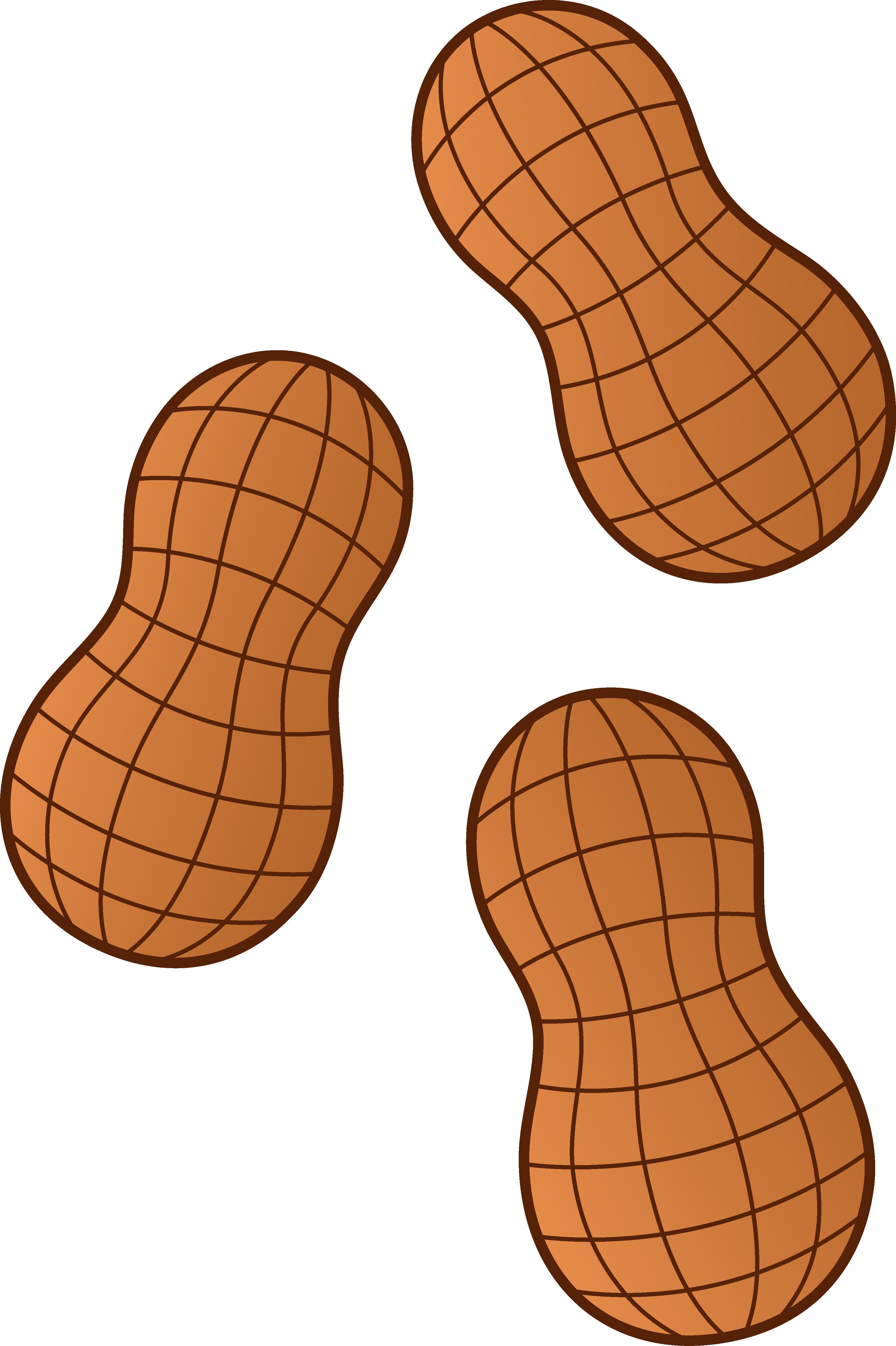 Peanut Butter clipart groundnut Free on Peanut Clip