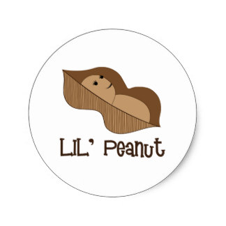 Peanut clipart lil Zazzle ROUND Peanut PEANUT LIL'