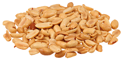 Peanut clipart mixed nuts Mixed page Free nuts 1