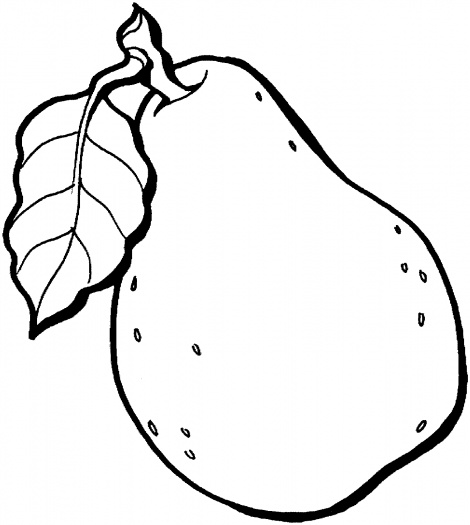 Guava clipart Odd Shaped of Most Facts