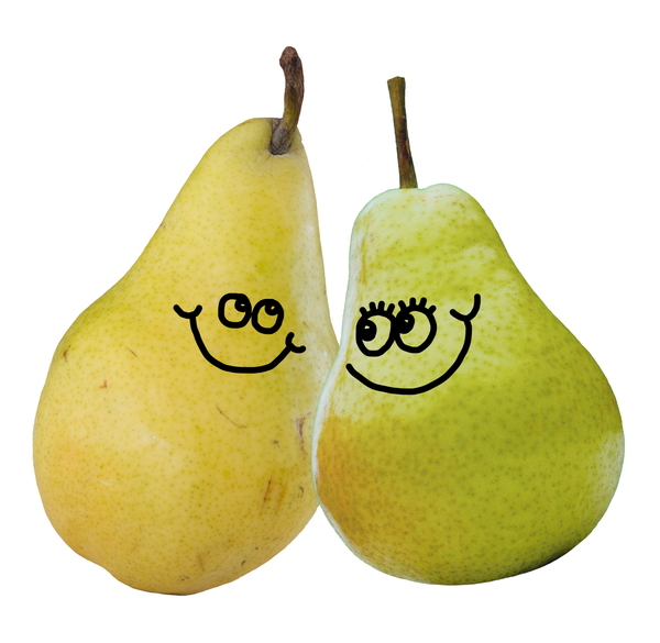 Pear clipart pair Images stock of A of
