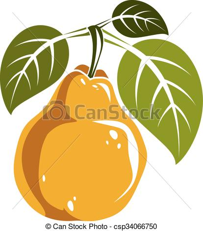 Pear clipart single fruit Yellow with ripe pear of
