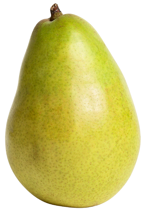 Pear clipart single fruit PNG Pear WEB Green Pear