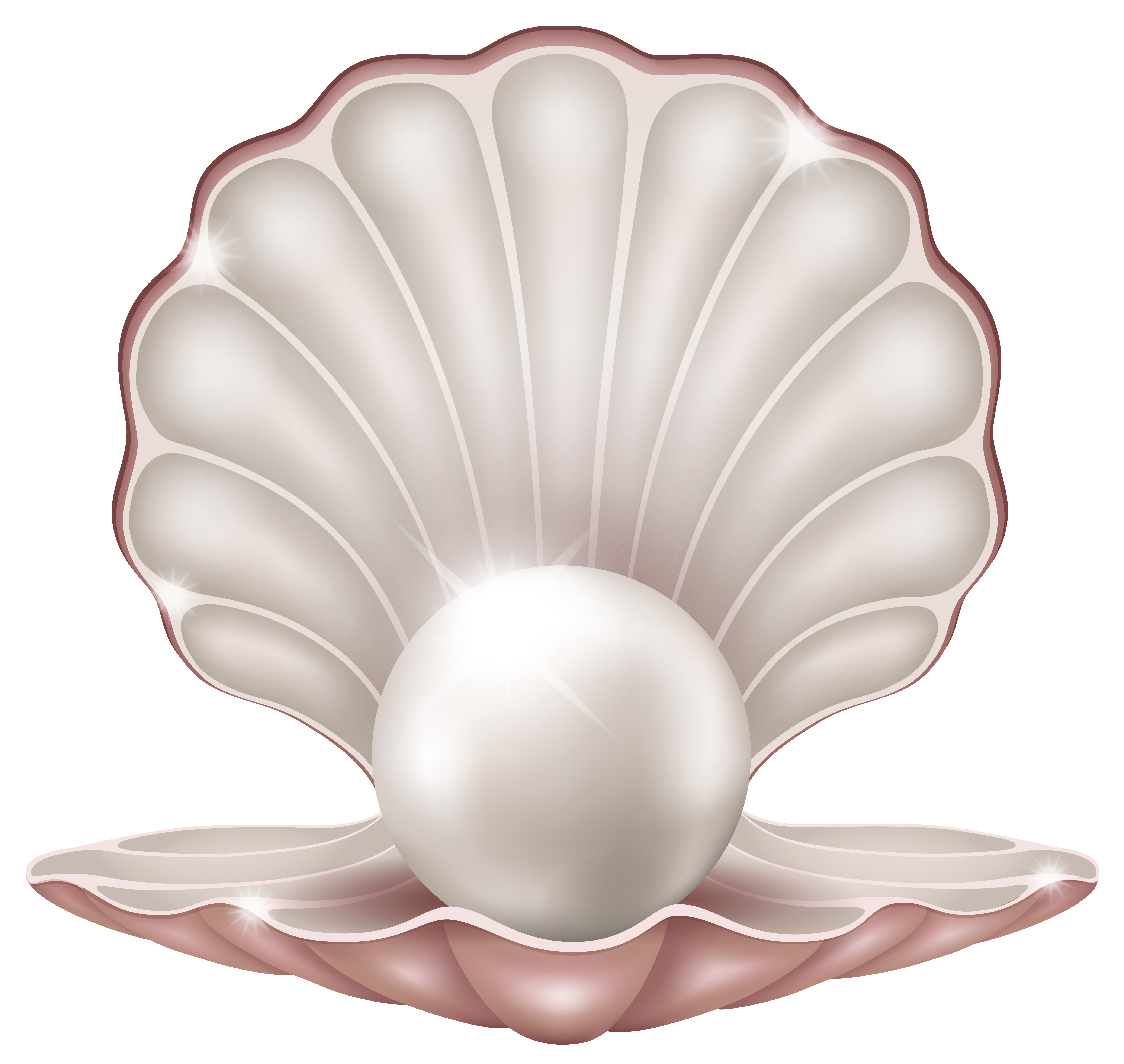 Pearl clipart Pearl clipart #3 clipart Download