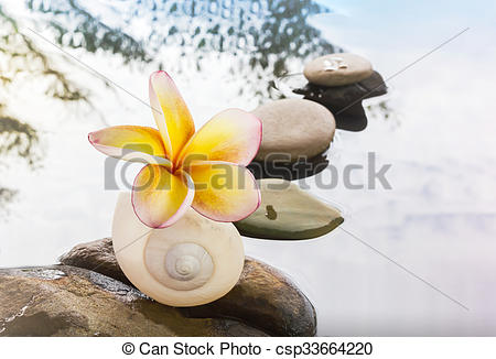 Pebble clipart water Flower Photo Stock Beautiful water