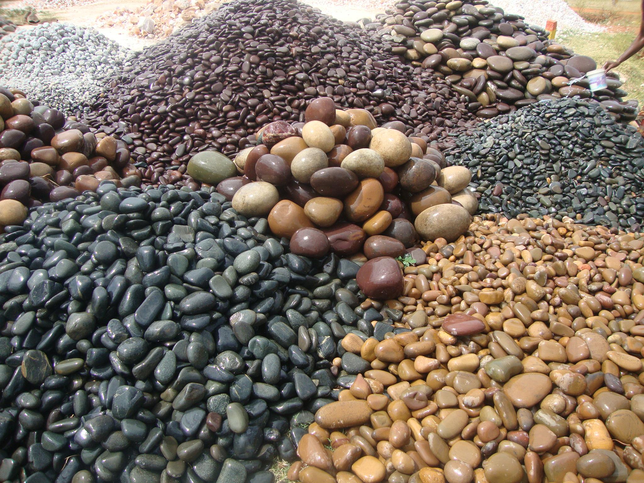 Pebbles clipart aquarium stone Your Importance Aquariums Your Actions