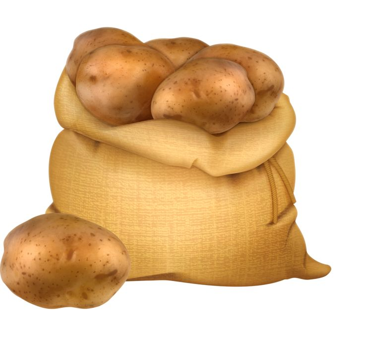 Pebbles clipart potatoe On Яндекс 174 Фотки images