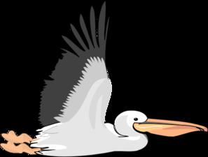 Pelican clipart Pelican Animal » online Pelican