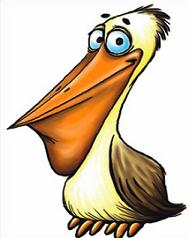 Pelican clipart Pelican Free Pelican Clipart