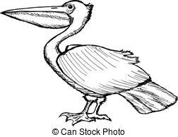 Pelican clipart black and white  pelican hand Pelican clip