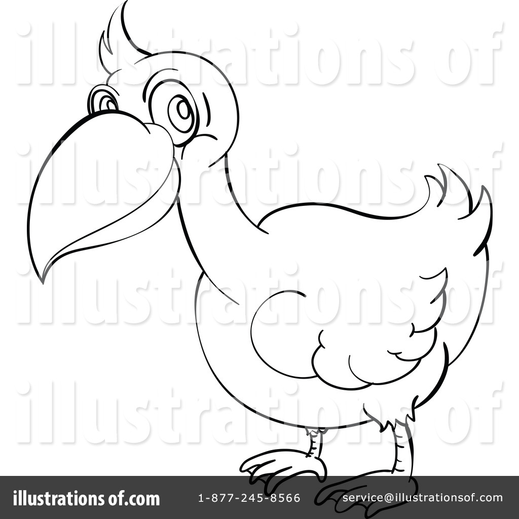 Pelican clipart head Free Illustration colematt colematt Royalty
