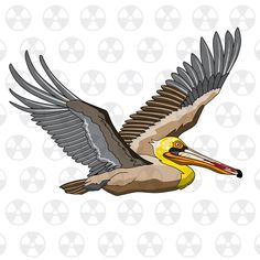 Pelican clipart louisiana On New New Vector File