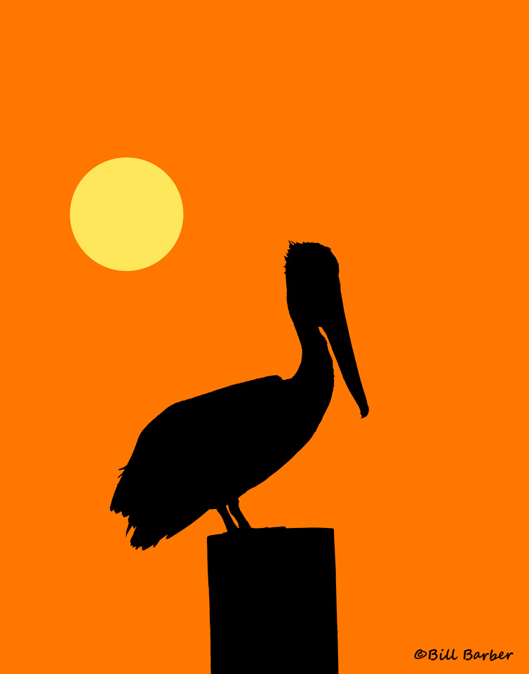 Pelican clipart silhouette Pinterest and & Clip Art