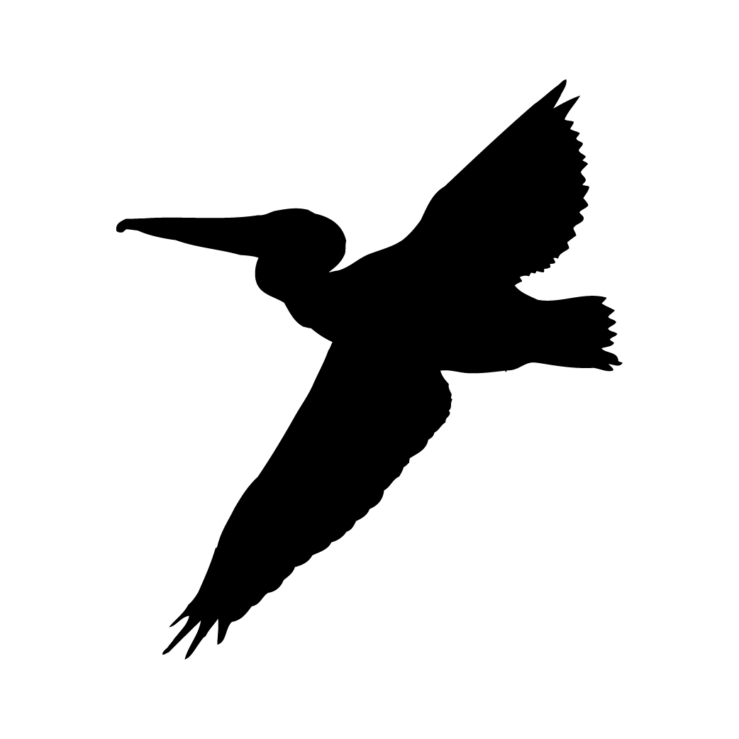 Pelican clipart silhouette  Pinterest silhouette Silhouettes Tattoo
