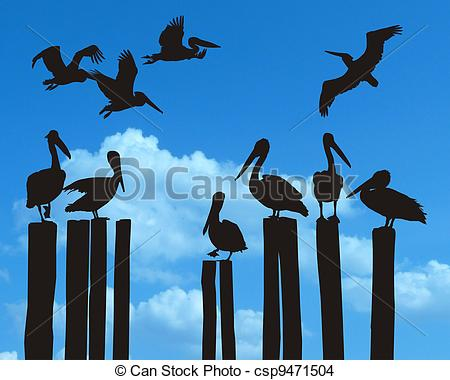 Pelican clipart silhouette That black royalty the and