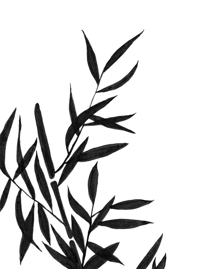 Pen clipart leaf Ink Eclectic Cycle pen Bamboo