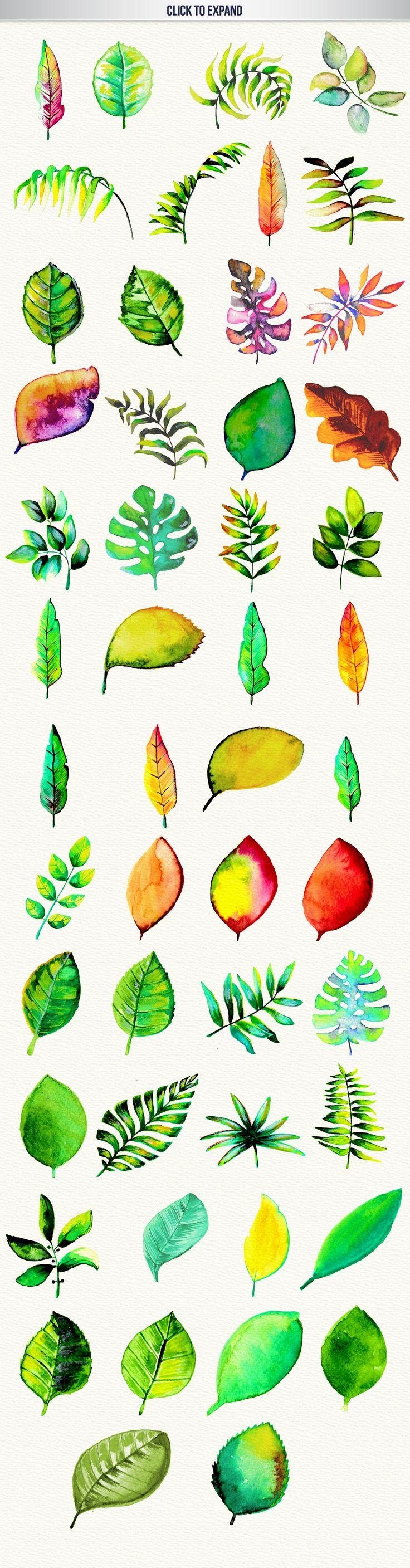 Pen clipart leaf Watercolor 25+ Watercolor High 50