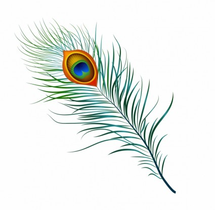 Pen clipart peacock feather (387 free vector feather feather