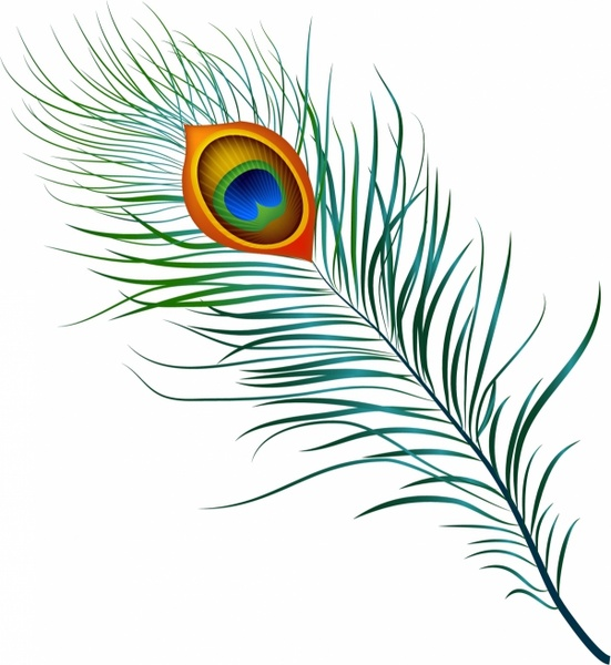 Pen clipart peacock feather Vector use free Peacock Feather