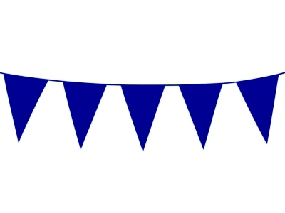 Single clipart bunting Blue Colour Plain Party Bunting