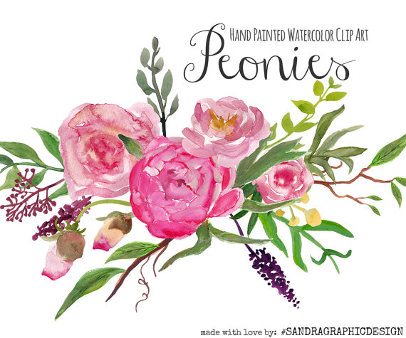 Peony clipart A art digital Floral clip