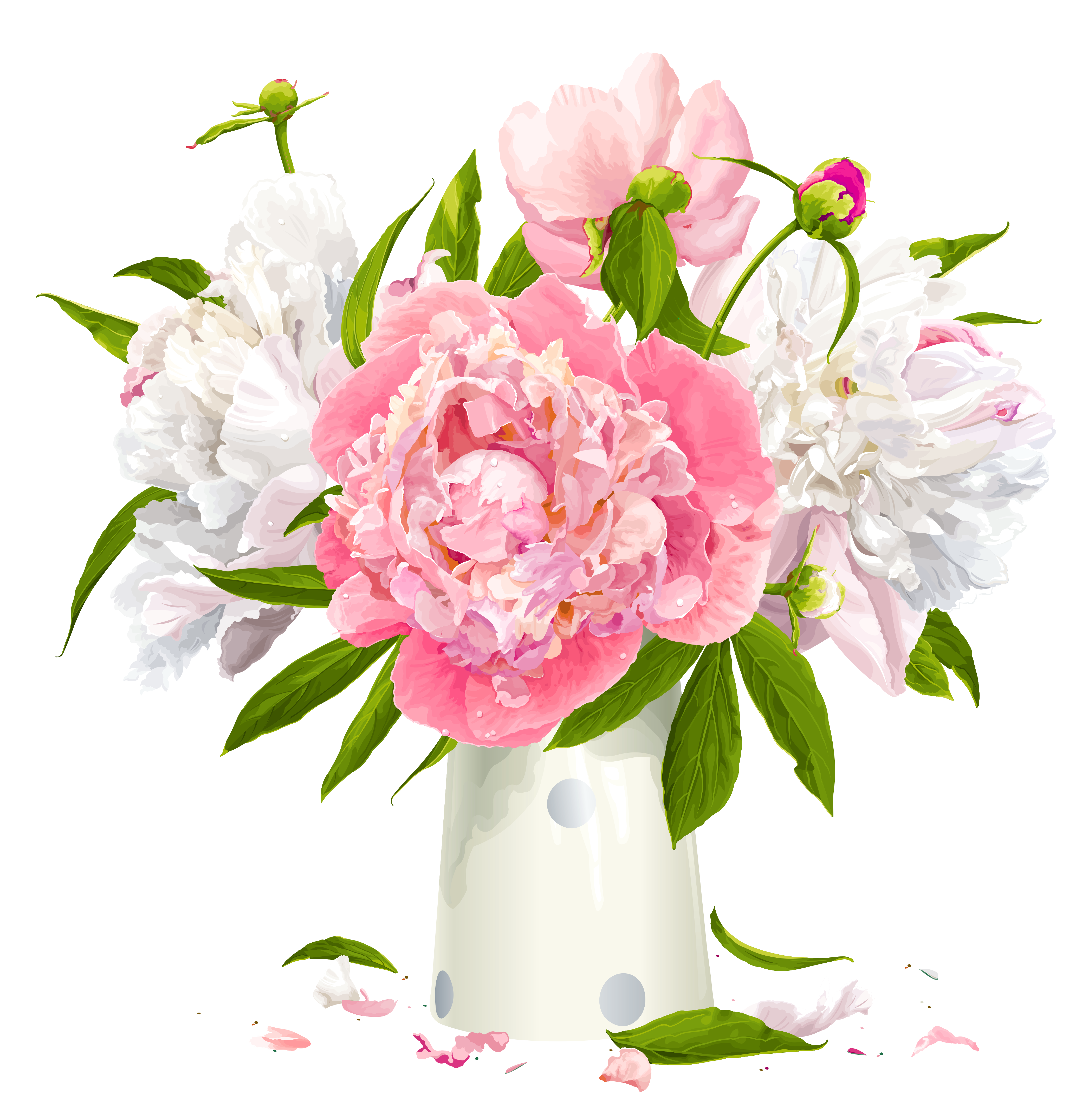 Vase clipart transparent Cliparts Peony Clipart Pink Peonies