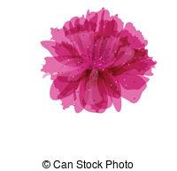Peony clipart Peony flower Clipart  vector