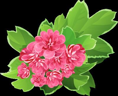 Bouquet clipart pink flower Floral clip art frame co