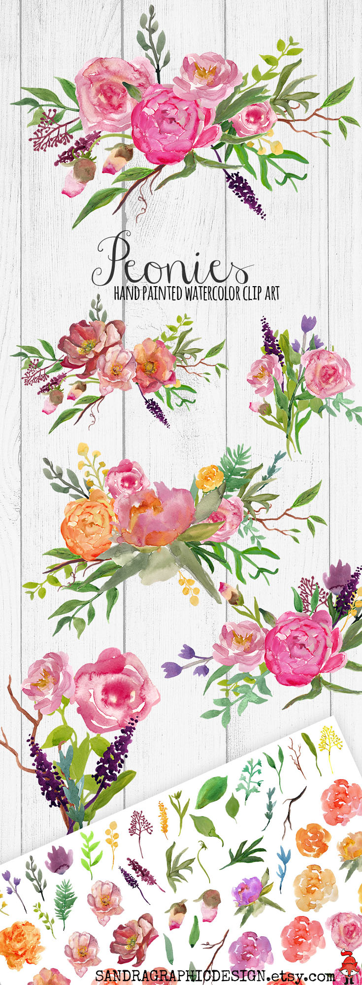 Peony clipart flower bunches