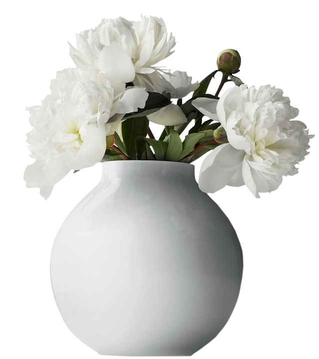 Peony clipart flower vase White Clipart View Yopriceville size