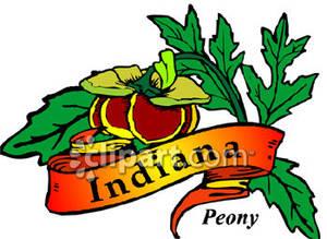 Peony clipart indiana #2