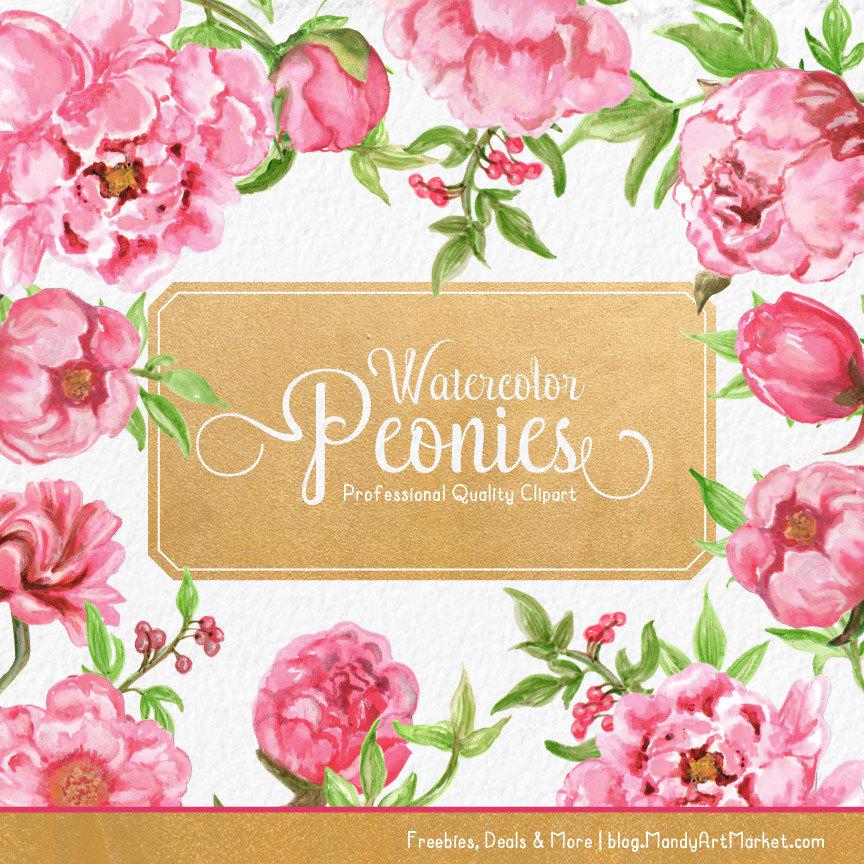 Peony clipart pink peony Clipart Pink Pink Watercolor Watercolour
