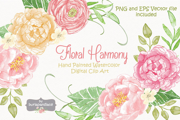 Peony clipart watercolor flower Market Vector by  Vector