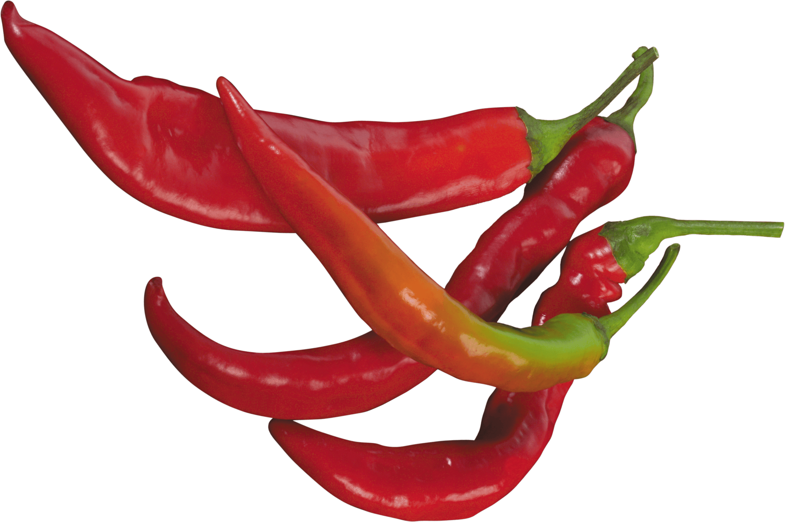 Chile clipart transparent Pepper Pepper Red transparent PNG