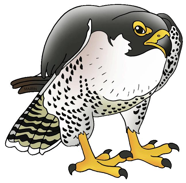 Prairie Falcon clipart #5